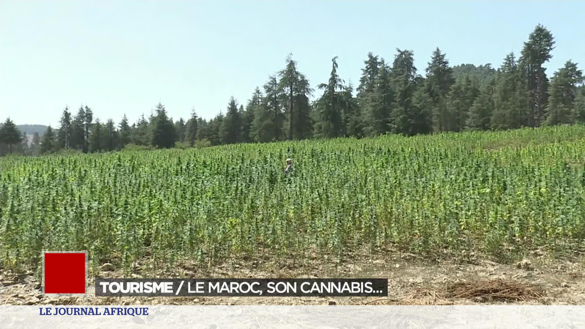 Maroc : le tourisme du cannabis